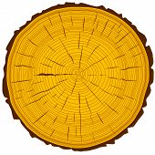 image of cutting trees  - Tree rings saw cut tree trunk background - JPG