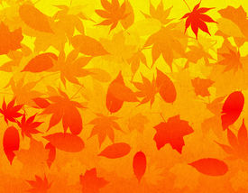 stock photo of fall leaves  - A falling leaves illustrated background using fall colors with a slight organic texture overlay - JPG