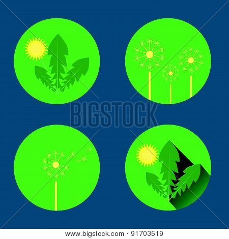 set of dandelion icons in flat style on green background