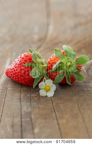 Strawberries With Blossom