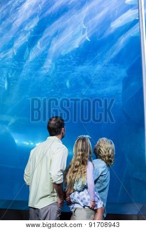 Happy family looking at the fish tank at the aquarium