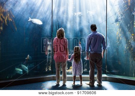 Young woman with her parents pointing a fish in the tank at the aquarium