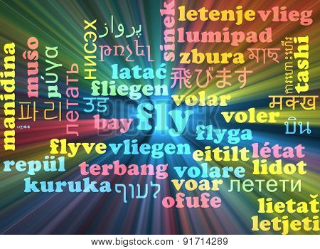 Background concept wordcloud multilanguage international many language illustration of fly glowing light