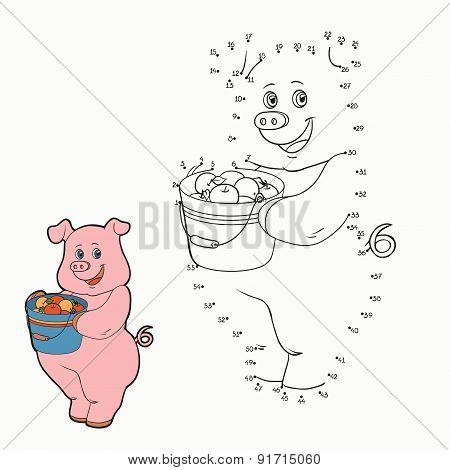 Numbers Game (pig)