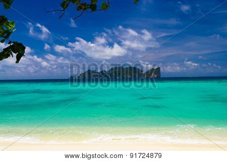 Jungle and Sea Green Getaway