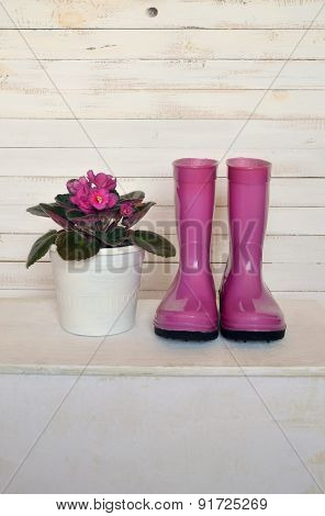 Still Life With Violet And Boots In Vintage Style