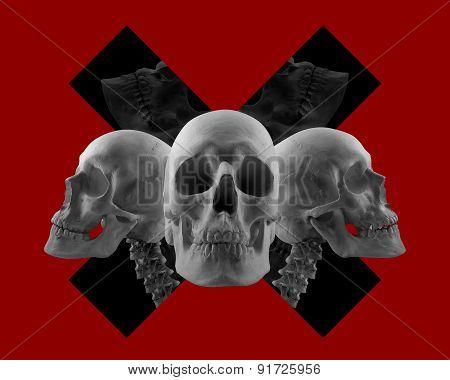 Skulls on red composition.