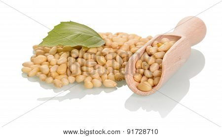 Pine nuts in a wooden scoop