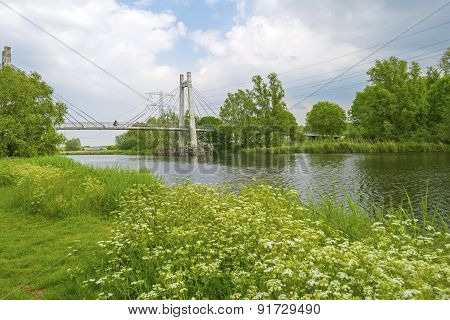 Cyclist on a bridge over a canal with wild flowers