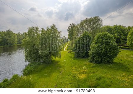 Trees along the shore of a canal in spring