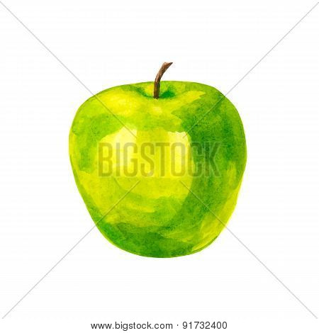 Realistic watercolor illustration apple isolated on white background vector