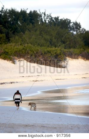 A Man Walking His Dog On A Beach