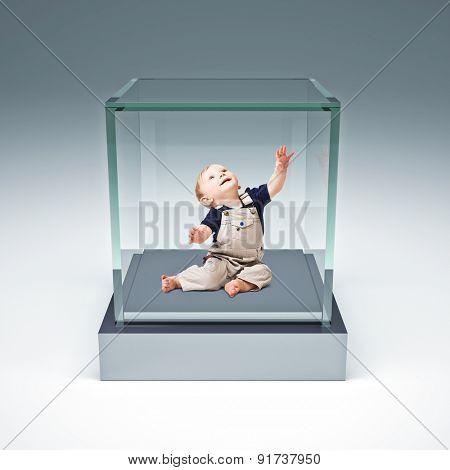 little child in glass box