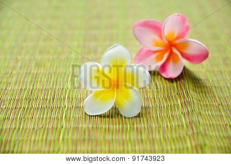Two frangipani flower on green mat