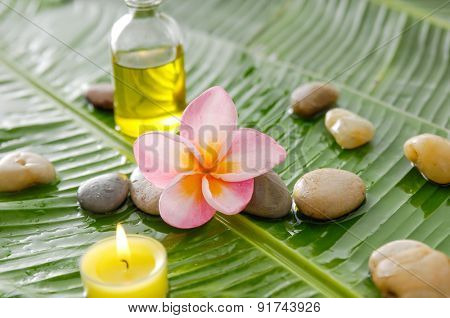 Pink frangipani and stones ,oil with burning candle on wet banana leaf
