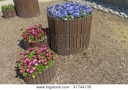 Flower Beds In The Form Of Wooden Barrels.