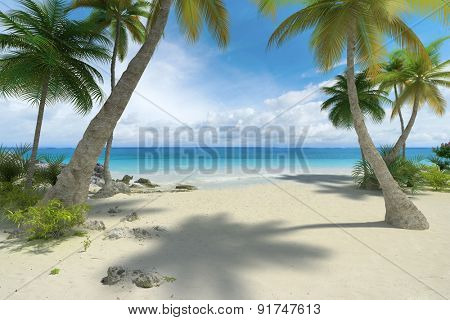 Tropical beach with palm trees and a lot of copy space