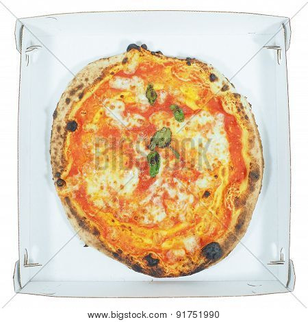 Margherita Pizza Carton Isolated
