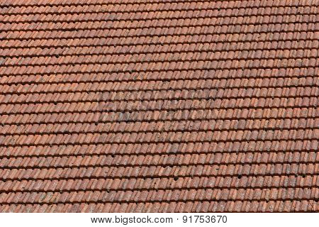 Roof Pattern
