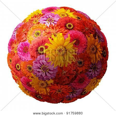 sphere from zinnia elegans flowers, vector