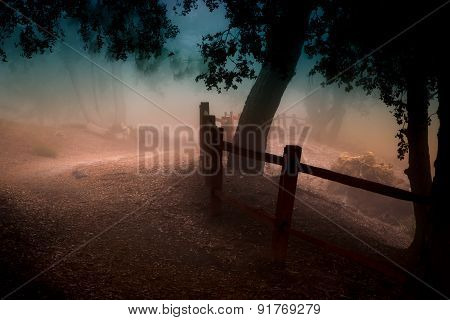 Foggy Mountain Path