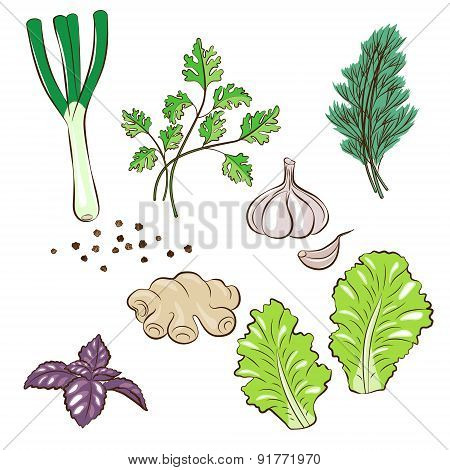 Greens For Cooking Set.