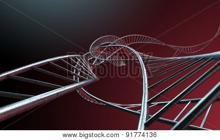Spiral Genetics Strands