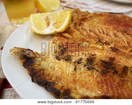 Grilled Bbq Trout Fish
