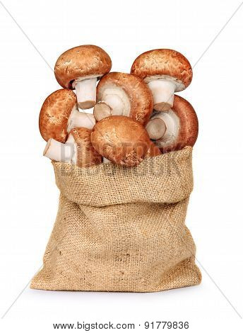 Fresh Mushrooms Mushrooms In A Bag Of Sackcloth Isolated On A White Background