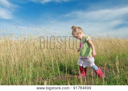 Toddler Preschooler Blonde Girl Going Down Dirt Road Among Farm Field