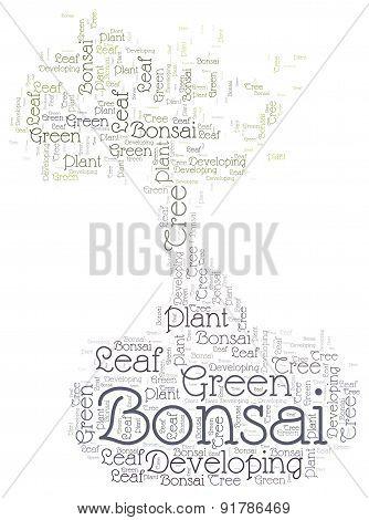 Bonsai - Word Cloud Concept
