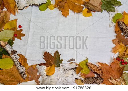 Autumn Frame, Space For Text