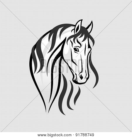 The Horse head in black and white - Illustration