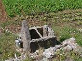 image of water well  - A well of stone in the vegetable garden of a farm with a watering can and a bucket of zinc - JPG