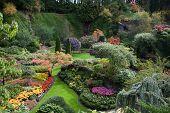 pic of masterpiece  -  Sunken Garden  - JPG