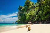 stock photo of koh phi-phi  - Monkeys waiting for food in Monkey Beach - JPG