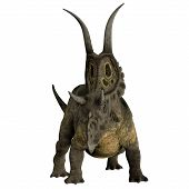 picture of herbivorous  - Diabloceratops was a herbivorous dinosaur that lived in the Cretaceous Period of Utah North America - JPG