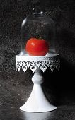 image of humble  - The Humble Tomato in vintage cake stand against dark slate kitchen bench top - JPG
