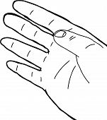 pic of human rights  - Single outlined human right hand over white background - JPG