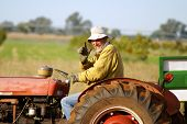 picture of waving  - Happy farmer waving from his old red tractor - JPG