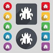 foto of disinfection  - Software Bug Virus Disinfection beetle icon sign - JPG