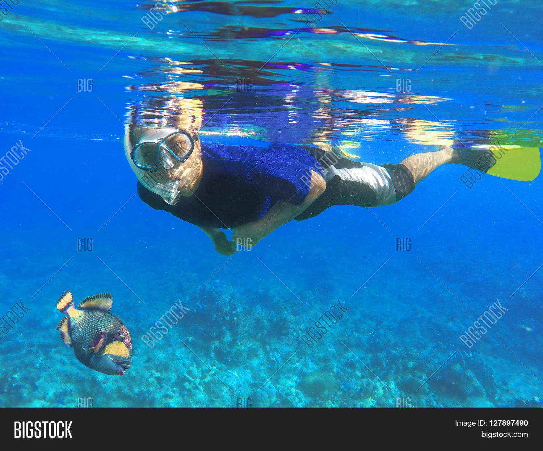 asian snorkel big fish under blue image u0026 photo bigstock