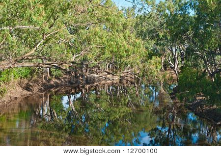 Peaceful Campaspe River After The Flood