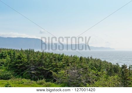Picture of the Newfoundland coast in summer time