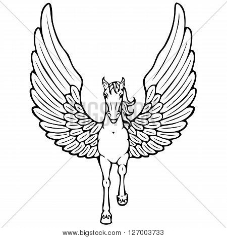 a contour of an abstract flying Pegasus