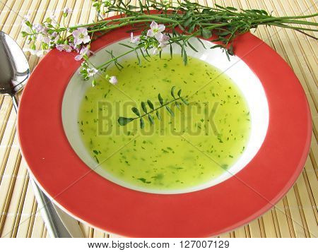 Homemade herb cream soup with cuckoo flower