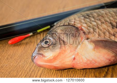 carp with fishing tackle on the wooden background ** Note: Soft Focus at 100%, best at smaller sizes