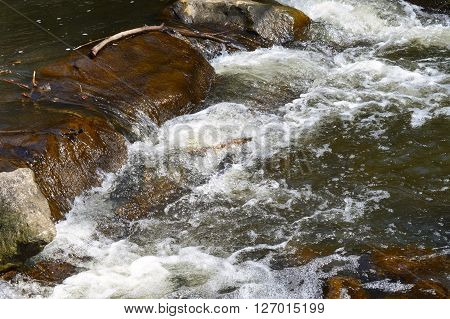 Motion of river rapids in the spring