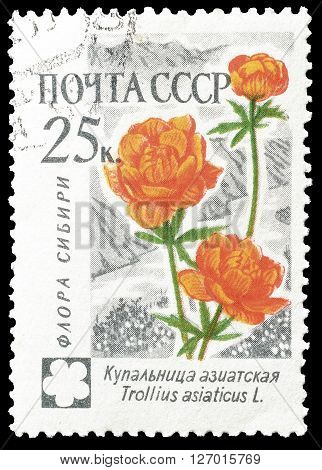 SOVIET UNION - CIRCA 1960 : Cancelled postage stamp printed by Soviet Union, that shows Trollius.