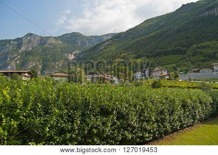 Mountains, The Italian Alps, Sunny Day